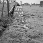 SD950095A, Man marking Ordnance Survey minor control revision point with an arrow in 1950s