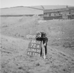 SD960072A, Man marking Ordnance Survey minor control revision point with an arrow in 1950s