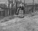 SD970135A, Man marking Ordnance Survey minor control revision point with an arrow in 1950s