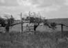SD920058A, Ordnance Survey Revision Point photograph in Greater Manchester