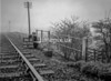 SD930186B, Ordnance Survey Revision Point photograph in Greater Manchester