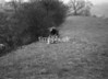 SD930167A, Ordnance Survey Revision Point photograph in Greater Manchester