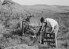 SD940714A, Man marking Ordnance Survey minor control revision point with an arrow in 1950s