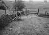 SD940628A, Man marking Ordnance Survey minor control revision point with an arrow in 1950s