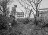 SD890773B, Ordnance Survey Revision Point photograph in Greater Manchester