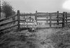 SD890564A, Ordnance Survey Revision Point photograph in Greater Manchester