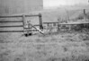 SD910791B, Ordnance Survey Revision Point photograph in Greater Manchester