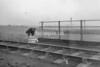 SD890531A, Ordnance Survey Revision Point photograph in Greater Manchester
