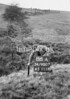 SD900786A, Ordnance Survey Revision Point photograph in Greater Manchester