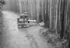 SD910748B, Ordnance Survey Revision Point photograph in Greater Manchester