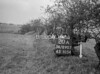 SD890720A, Ordnance Survey Revision Point photograph in Greater Manchester