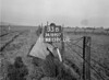 SD890733B, Ordnance Survey Revision Point photograph in Greater Manchester