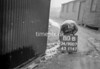 SD900780B, Ordnance Survey Revision Point photograph in Greater Manchester