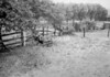 SD910728A, Ordnance Survey Revision Point photograph in Greater Manchester