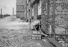 SD910688B, Ordnance Survey Revision Point photograph in Greater Manchester