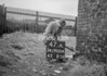 SD900447A, Ordnance Survey Revision Point photograph in Greater Manchester