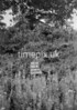SD881460B, Ordnance Survey Revision Point photograph in Greater Manchester