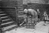SD911730A, Ordnance Survey Revision Point photograph in Greater Manchester