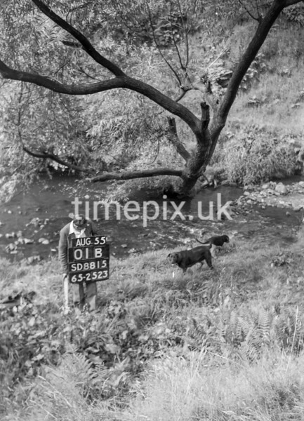 SD881501B2, Ordnance Survey Revision Point photograph in Greater Manchester