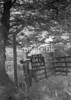 SD881404L, Ordnance Survey Revision Point photograph in Greater Manchester