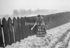 SD891496A, Ordnance Survey Revision Point photograph in Greater Manchester