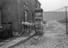 SD911715B, Ordnance Survey Revision Point photograph in Greater Manchester