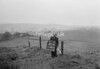 SD891025B, Ordnance Survey Revision Point photograph in Greater Manchester