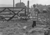 SD891073B, Ordnance Survey Revision Point photograph in Greater Manchester