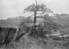 SD871575B, Ordnance Survey Revision Point photograph in Greater Manchester