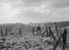 SD851225A, Ordnance Survey Revision Point photograph in Greater Manchester