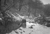 SD861291K, Ordnance Survey Revision Point photograph in Greater Manchester
