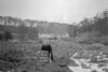 SD861291A, Ordnance Survey Revision Point photograph in Greater Manchester
