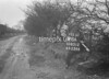 SD851298A, Ordnance Survey Revision Point photograph in Greater Manchester