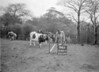 SD841494A, Ordnance Survey Revision Point photograph in Greater Manchester