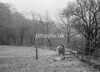 SD851245A, Ordnance Survey Revision Point photograph in Greater Manchester