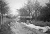 SD861336B, Ordnance Survey Revision Point photograph in Greater Manchester