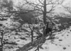 SD851324B, Ordnance Survey Revision Point photograph in Greater Manchester