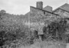 SD871595B, Ordnance Survey Revision Point photograph in Greater Manchester
