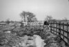 SD861373B, Ordnance Survey Revision Point photograph in Greater Manchester