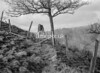 SD851235B, Ordnance Survey Revision Point photograph in Greater Manchester