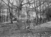SD851263A, Ordnance Survey Revision Point photograph in Greater Manchester