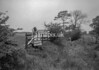 SD871447B, Ordnance Survey Revision Point photograph in Greater Manchester