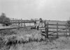 SD831251B, Ordnance Survey Revision Point photograph in Greater Manchester