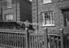 SD871473L, Ordnance Survey Revision Point photograph in Greater Manchester