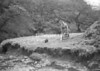 SD851421A, Ordnance Survey Revision Point photograph in Greater Manchester
