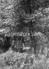 SD871587K2, Ordnance Survey Revision Point photograph in Greater Manchester