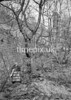 SD861261B, Ordnance Survey Revision Point photograph in Greater Manchester