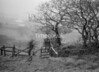 SD851421K, Ordnance Survey Revision Point photograph in Greater Manchester