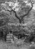SD871680A1, Ordnance Survey Revision Point photograph in Greater Manchester
