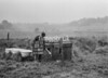 SD881203A, Ordnance Survey Revision Point photograph in Greater Manchester